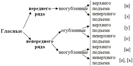 онлайн схема слова мхи звуки