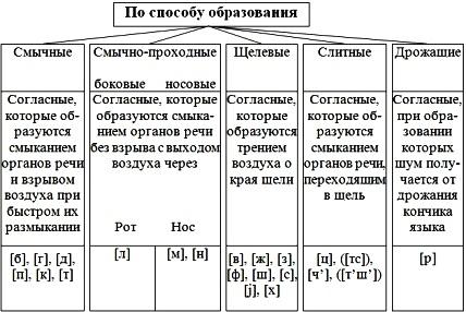 Андрейченко Л.Н. Русский язык.